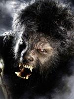 Benicio Del Toro in The Wolfman